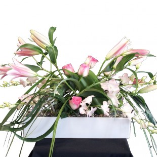 Pink Corporate Flowers