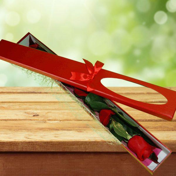 Exotic Rose Gift Box Red – Single Stem