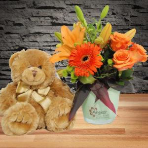 Baby Glorious- Orange Vase Main