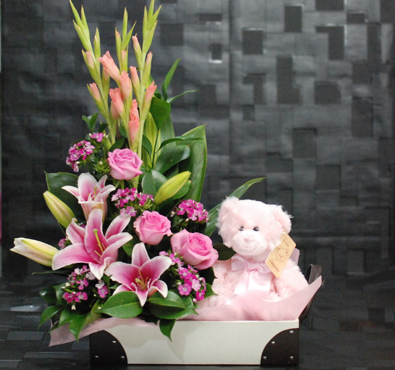 Flower Girl Baskets Sydney : Cute baby girl pink bb angkor flowers