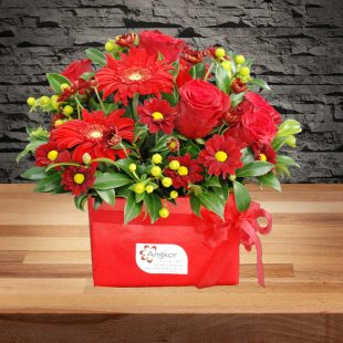Ruby - Red Box Arrangement-Main