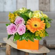 Get well Flowers- Mini Colourful- Mini Box Arrangement – Angkorflowers