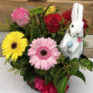 Easter flowers - lovely